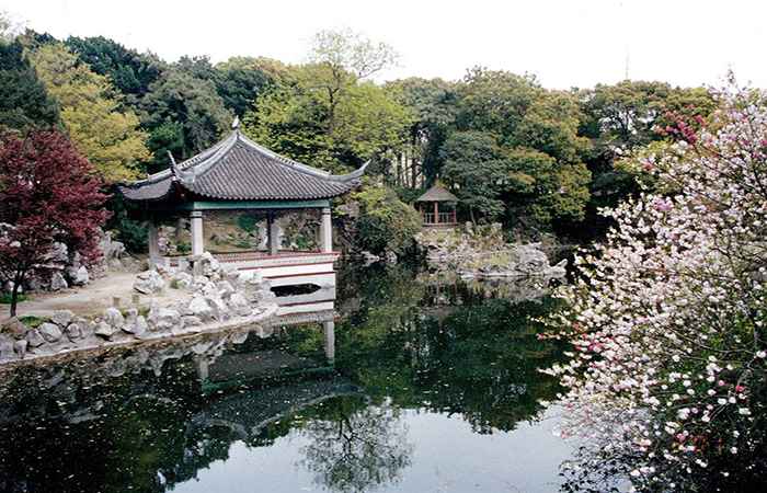 叶家花园:隐秘在上海杨浦的百年园林