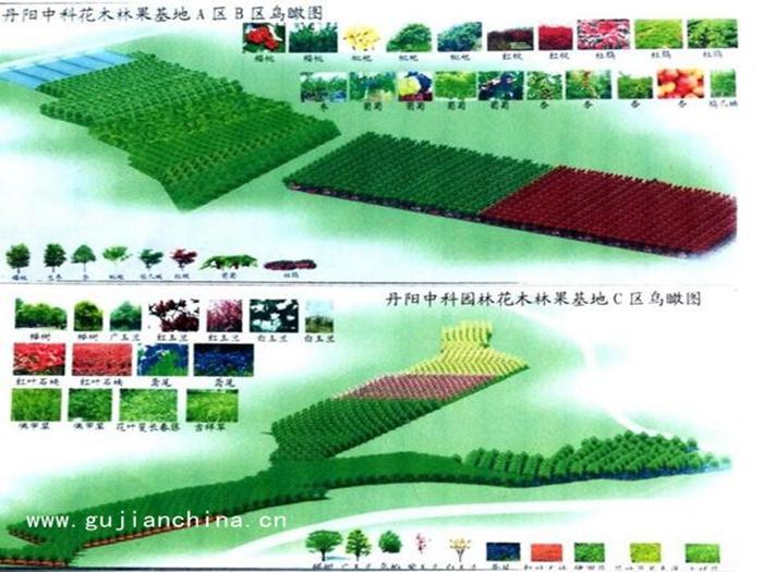江苏苗圃项目转让(中科园林建设)