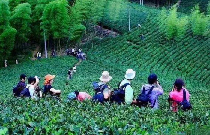 """""""夕阳红""""中的朝阳产业:乡村旅游与养老旅游"""