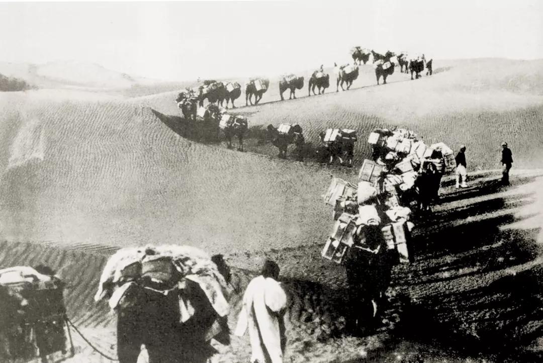 大谷探险队