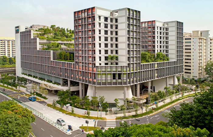 优秀的建筑绿化设计,新加坡堪称经典!
