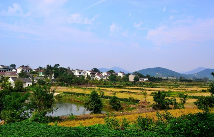 江苏实行特色小镇动态淘汰 取消一次性命名制