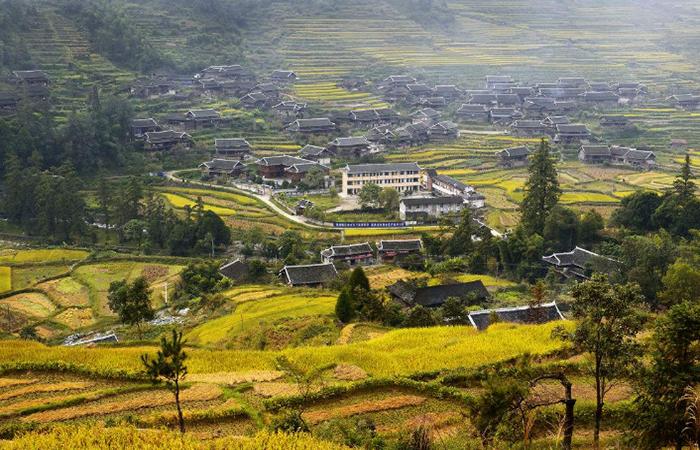《国家质量兴农战略规划(2018-2022年)》审议通过