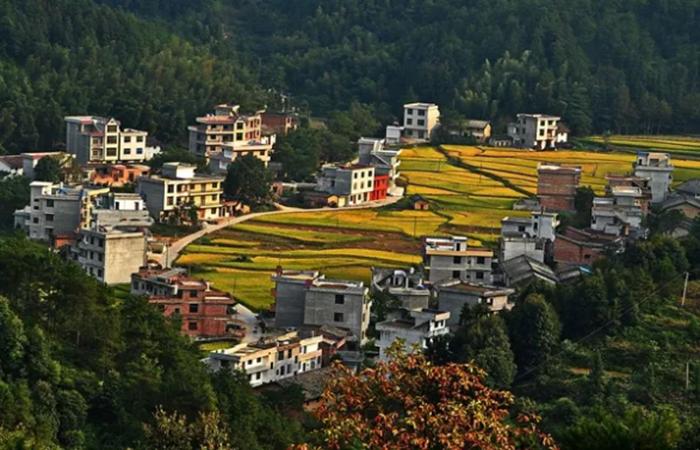 乡村振兴战略规划,2019年农村发展趋势如何?
