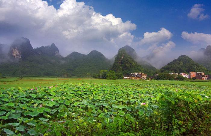 乡村振兴战略:田园综合体与旅居养老如何融合?