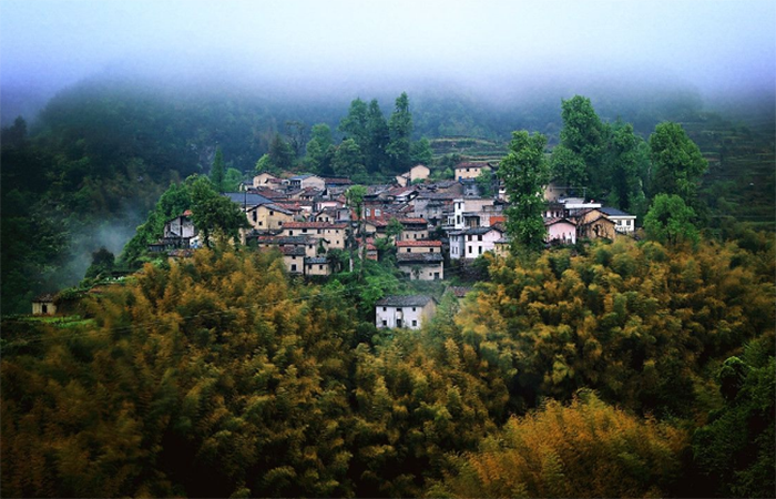浙江民宿的发展为乡村振兴带来了什么?