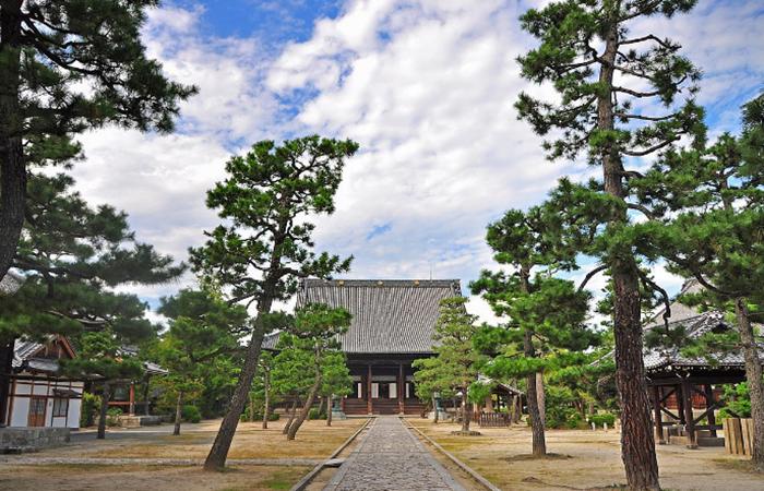 解读日本寺院庭园的禅意与美