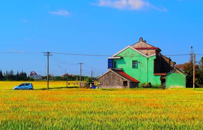 如何通过创新的方式,发展乡村旅游?