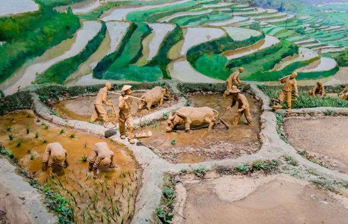 农耕中国:以史为鉴 继往开来