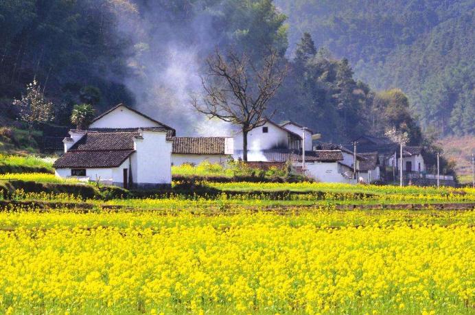 美丽乡村建筑景观