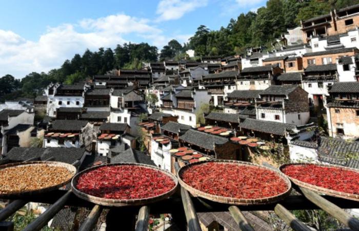 2019农业部对外发布的中国美丽乡村建设十大模式
