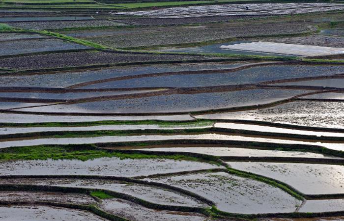 农业文明:为何要做土著农耕?