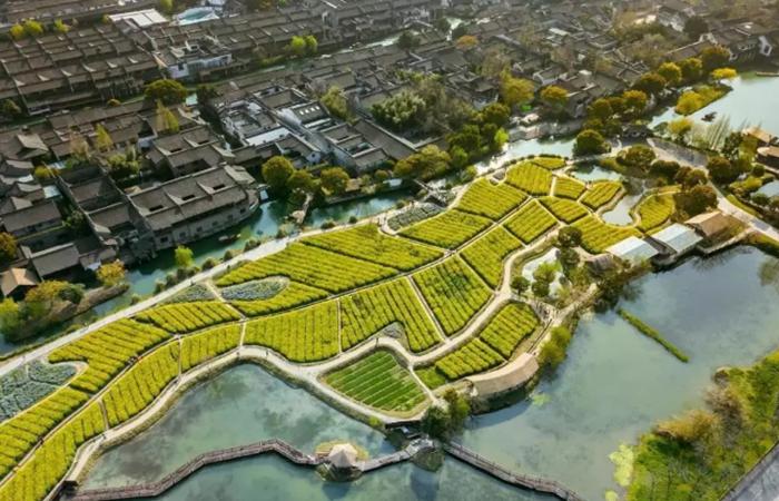 中国乡村旅游发展现状以及如何提升?