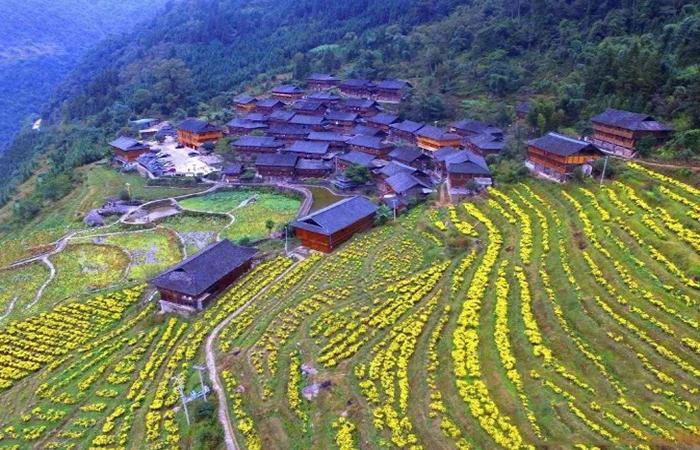 乡村振兴战略:美丽乡村建设十大范本参考