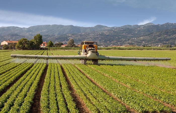 中国农业的远虑与近忧,有哪些方面?