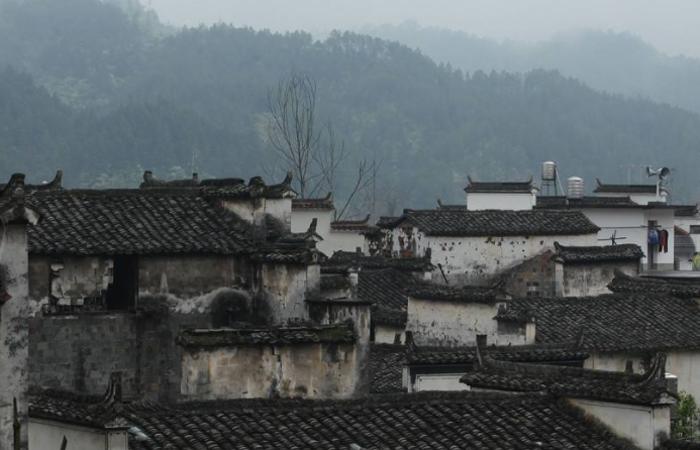 庐江县柯坦镇枣岗村村级服务中心装饰工程项目公开招标公告