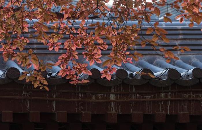 建筑材料青瓦铺设方法与青砖砌筑方法,传承古典美