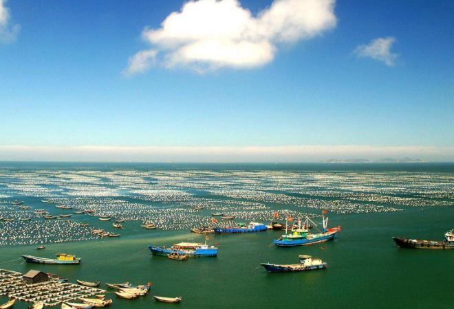 定海远洋渔业小镇