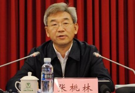 张桃林:让良好生态成为乡村振兴的支撑点