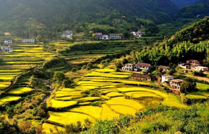 乡村振兴:乡旅产业融合发展,全面升级游客体验!