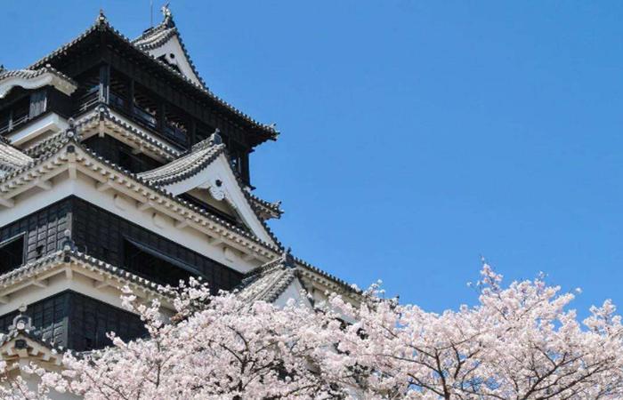 日本养老对我国有哪些可以学习和借鉴的地方?