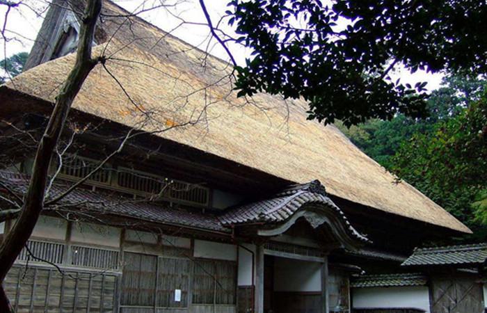 日本是如何保护木构古建筑的?