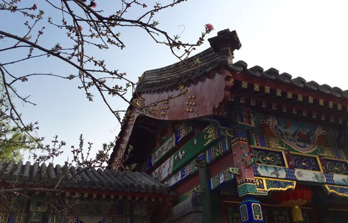 古人的智慧——中国漆文化的发展史