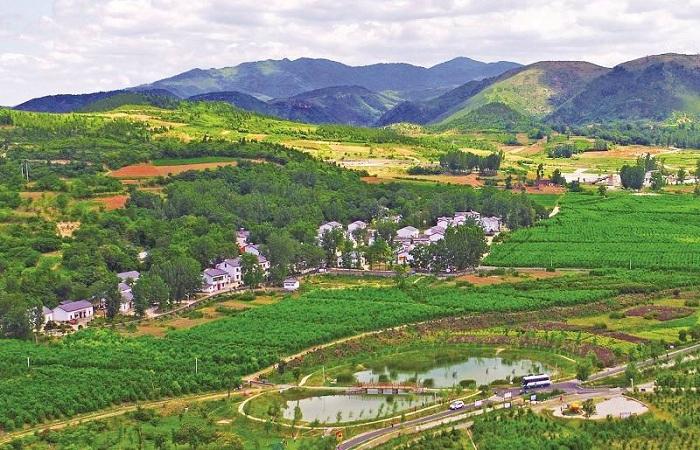 乡村振兴战略如何做好绿色发展规划