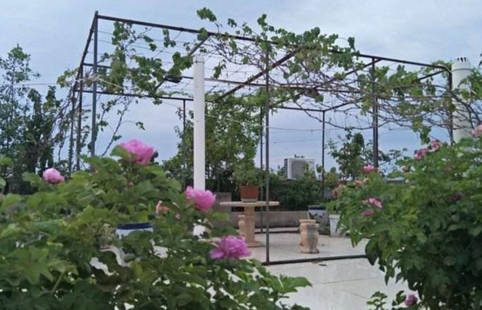 郾城区辽河花园小区物业改造工程招标公告