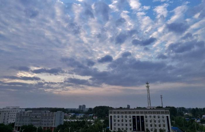 漯河市召陵区召陵镇跨街牌楼工程招标公告
