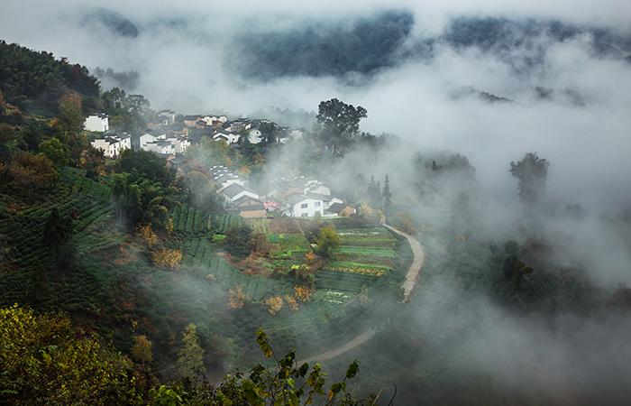 乡村振兴中乡村文化的重塑,面临了哪些困境?