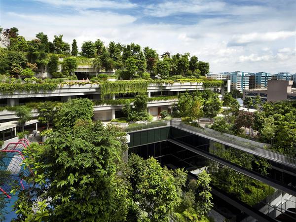 新加坡露台屋顶公园