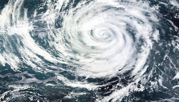 最近良渚古城遗址公园抗住了两次台风 专家一致给高分