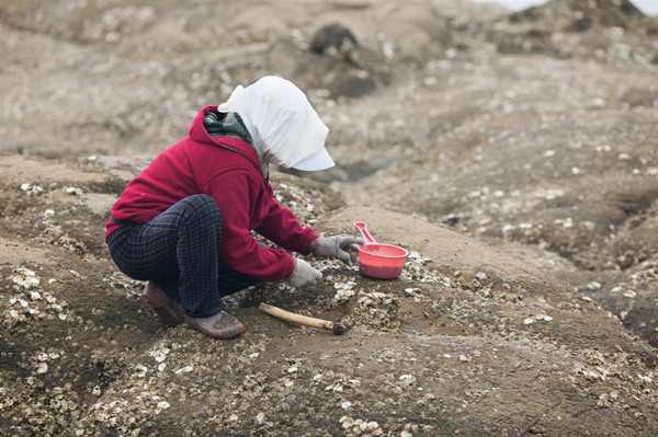 常州象墩遗址考古开工,史前文明即将揭开神秘面纱