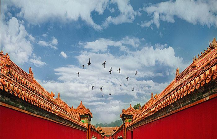 """单霁翔揭秘故宫""""防火秘笈"""":1200栋古建筑上没有一根草"""