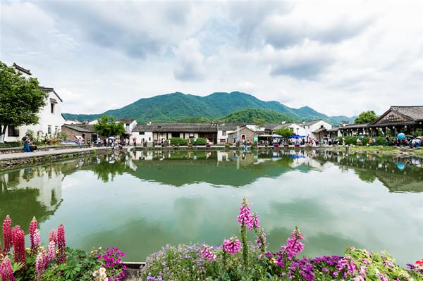 浙江省美丽乡村建设的经验与启示