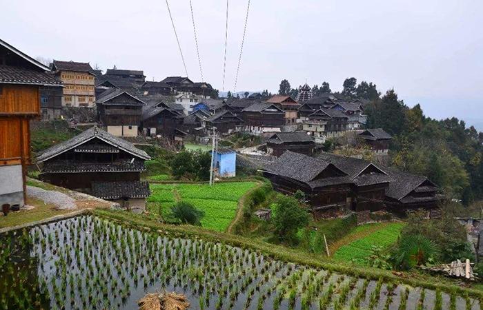 《中国共产党农村工作条例》,深入实施乡村振兴战略!