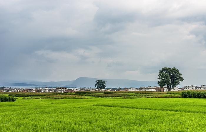 关于农业农村部办公厅关于开展中国美丽休闲乡村推介活动的通知