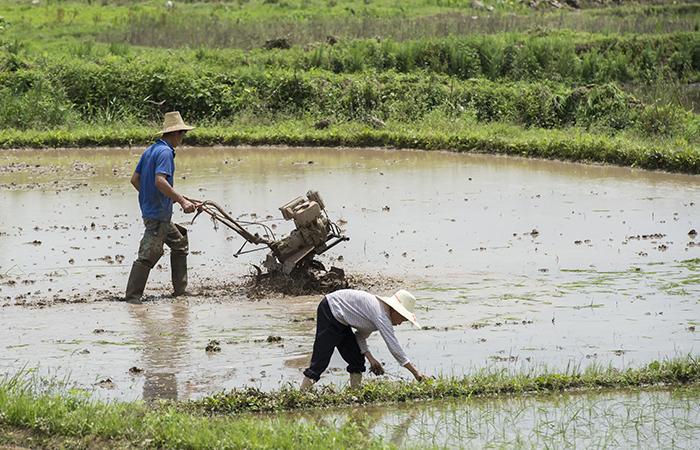 中国农耕文明,一直影响着中国人的性格!