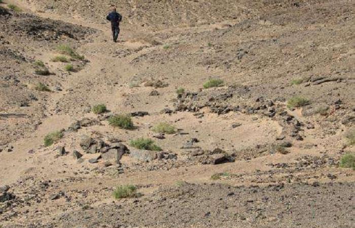 内蒙古阿拉善多处文物遗址发现大量陶片瓷片