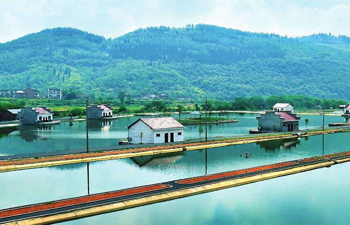 乡村旅游的发展对乡村振兴有何作用?