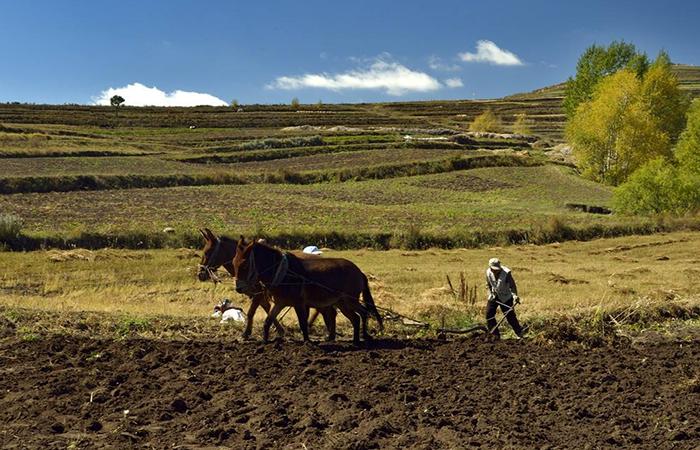 农耕文化源远流长,让农业成为有奔头的产业!