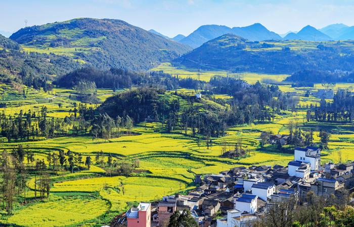 田园综合体的建设,如何加入康养元素?