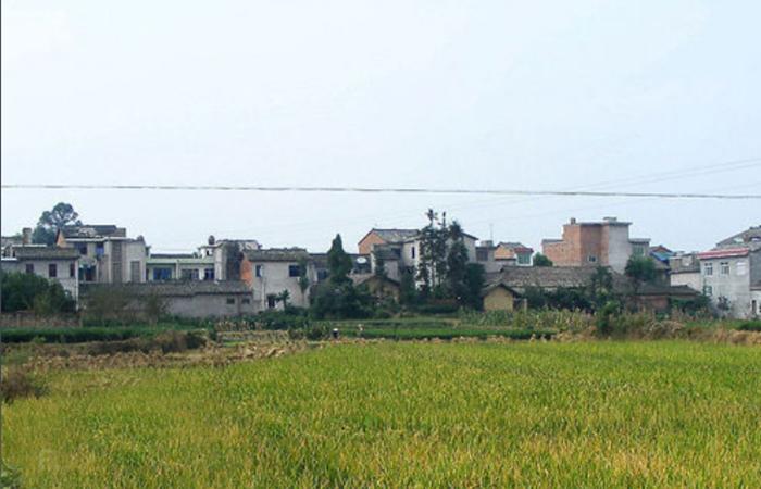 嘉峰镇殷庄村村庄绿化工程公开招标