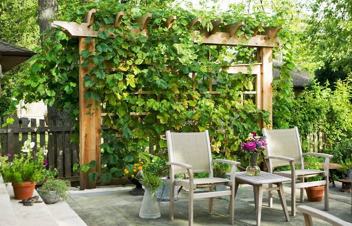 浅谈家庭庭院的园林景观设计要点