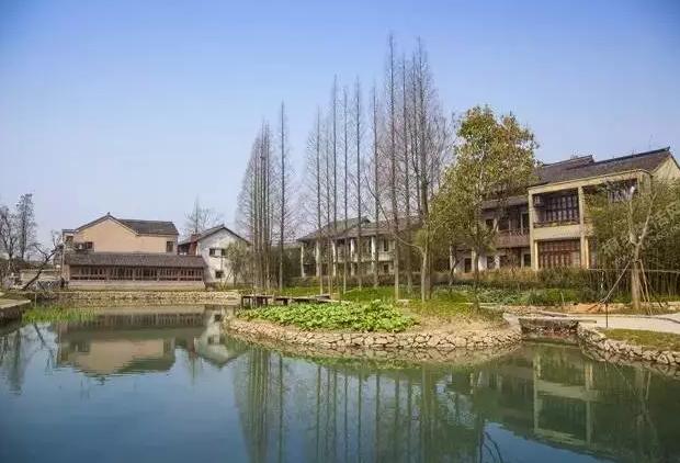 乌镇农业综合