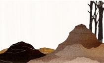 金道景观设计合作项目