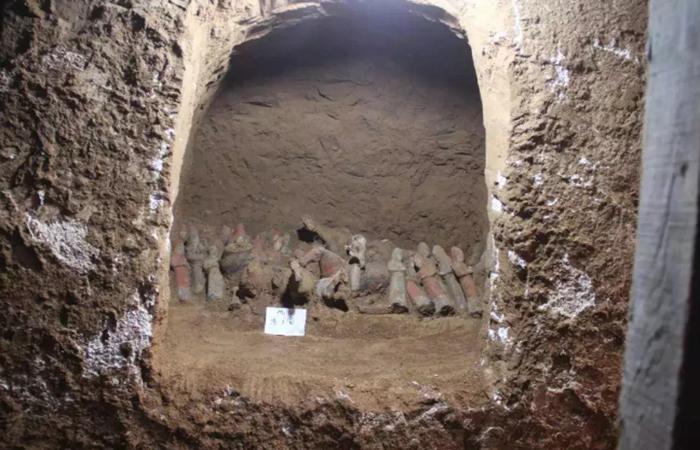 唐朝太平公主丈夫薛绍墓被发现!