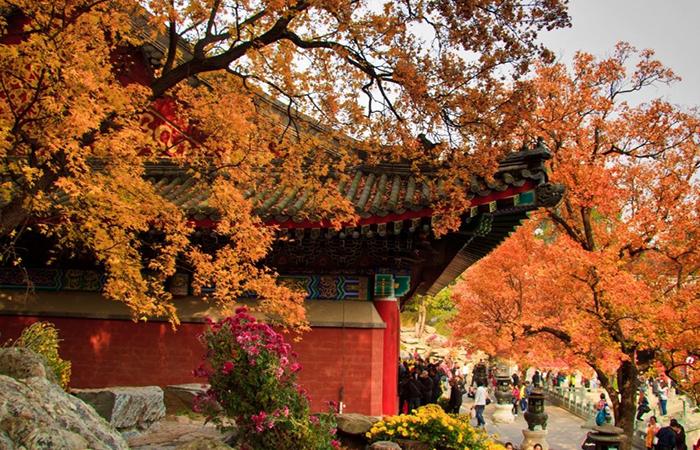 古代皇家园林故事——北京的三山五园