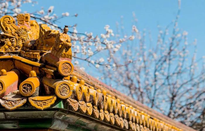 当颜色遇上古建筑,探寻中国古建筑的色彩密码!